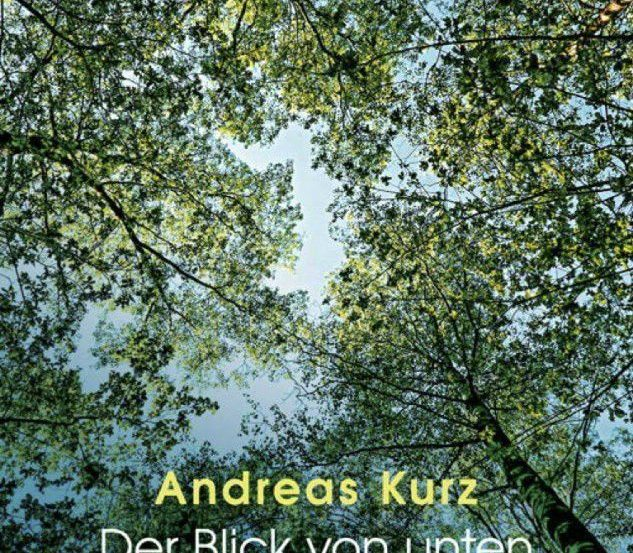 Kurz 633x553 - Andreas Kurz: Der Blick von unten durch die Baumkrone in den Himmel