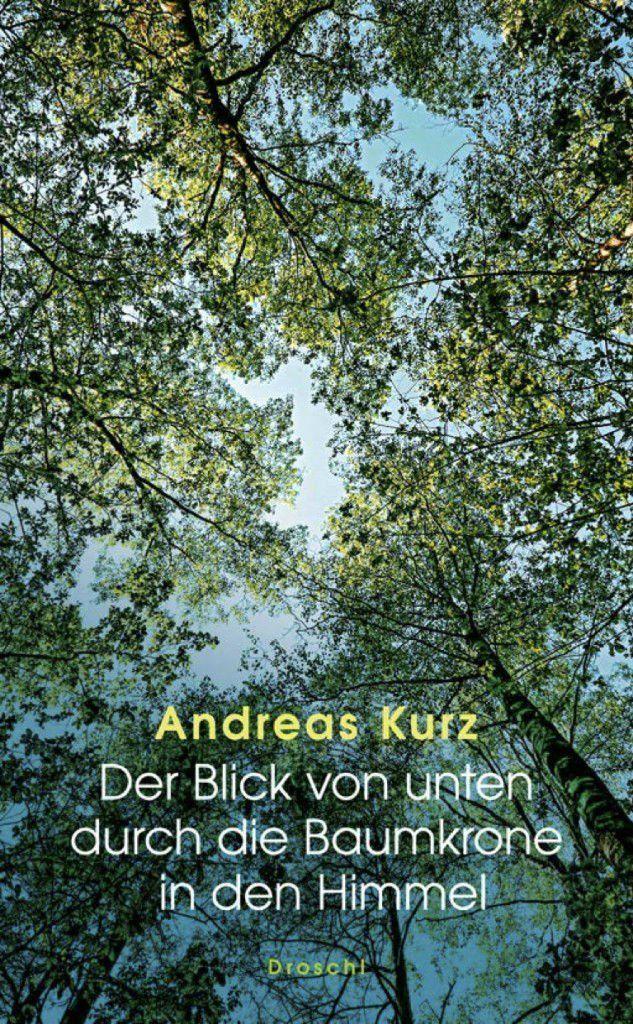Kurz - Andreas Kurz: Der Blick von unten durch die Baumkrone in den Himmel