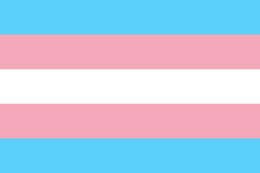 Pride Trans