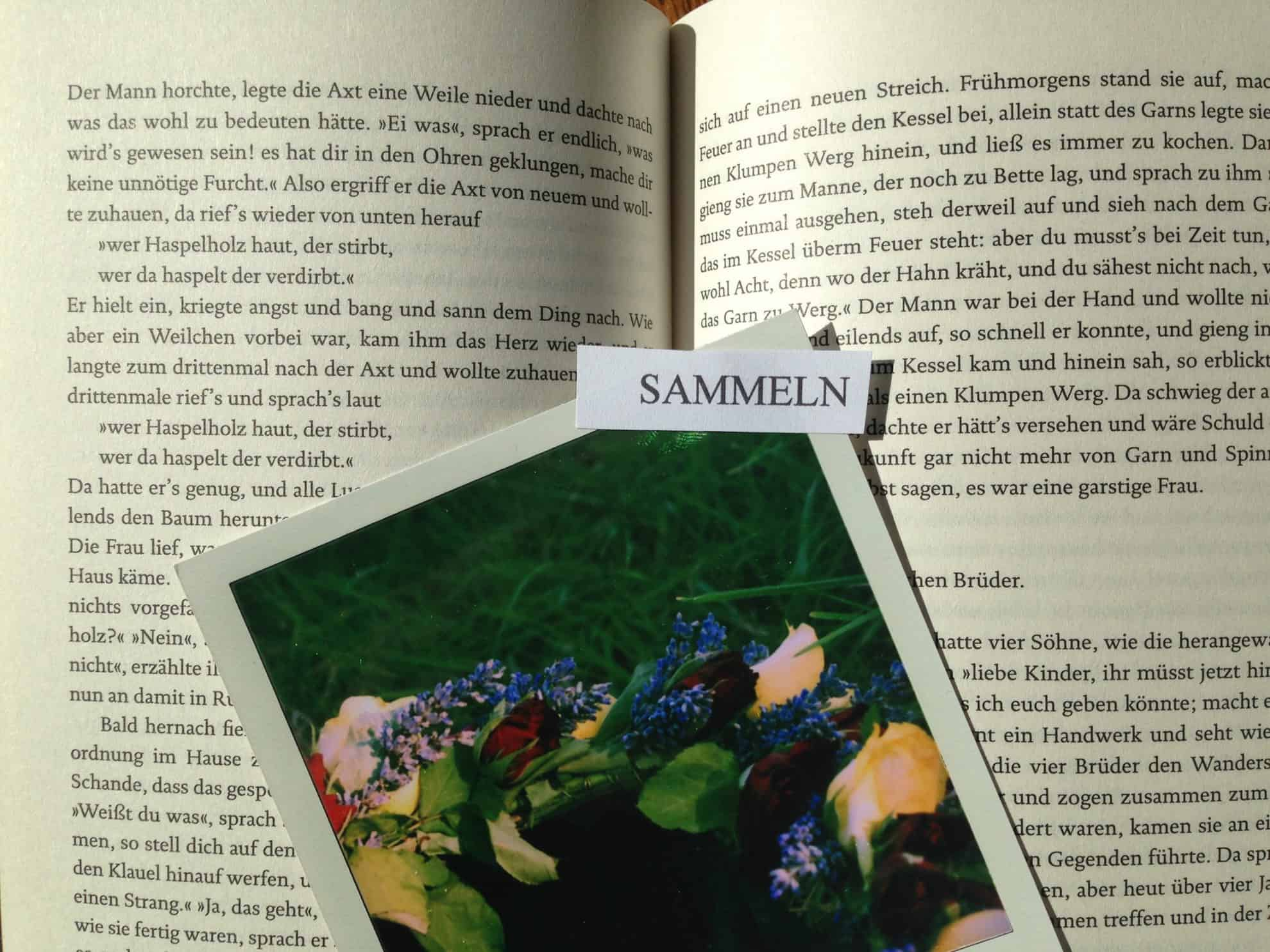 IMG 2588 scaled - Kapitel 0: Die Kunst des Sammelns